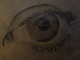 The Eye by MissReGifted
