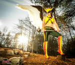 Hawkgirl - Calm before the storm