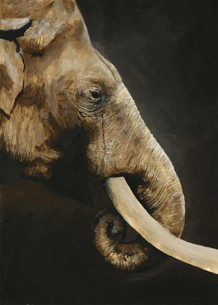 The White Elephant by menton3