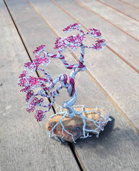 Pink and Aluminium wire bonsai by Tom-the-artist