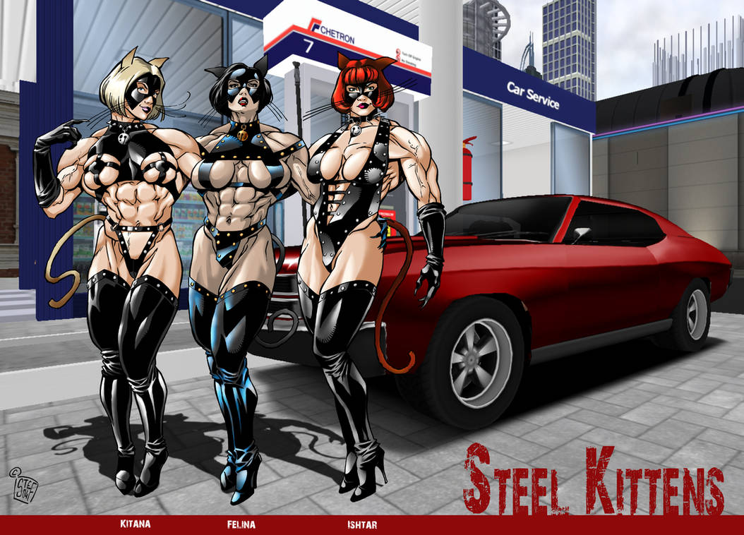 The Steel Kittens colors