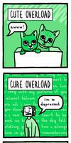 Overloads