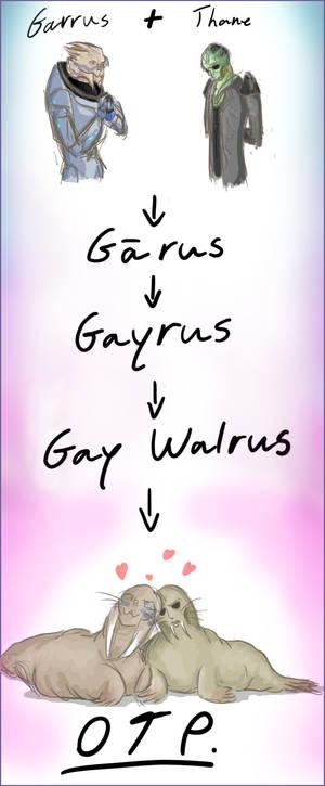 Walrus Vakarian