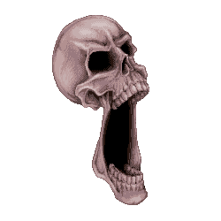 Skull by Jelayer