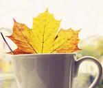 Drink the autumn