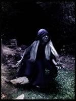 Into the Moonlight by Cassandra28