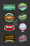 8 Retro Vintage badges 2