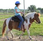 058 : Pony Walk