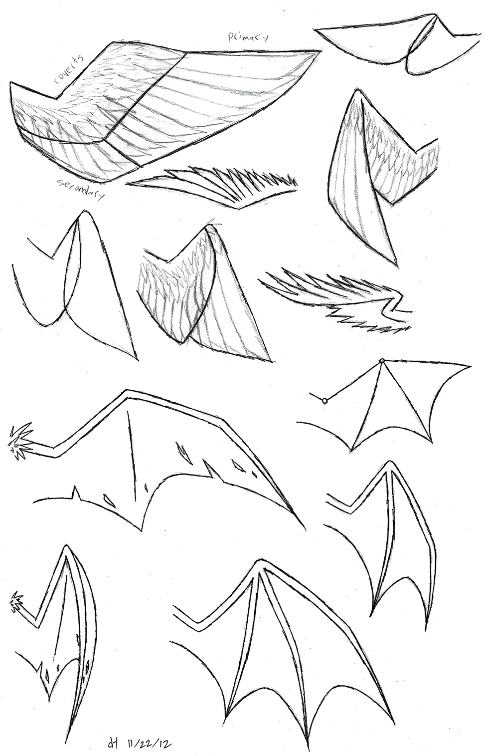 Wing Study by VibrantE...