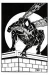 Spider-Man - Black Costume
