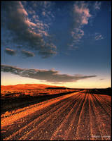 A dirty road in the outback by godintraining