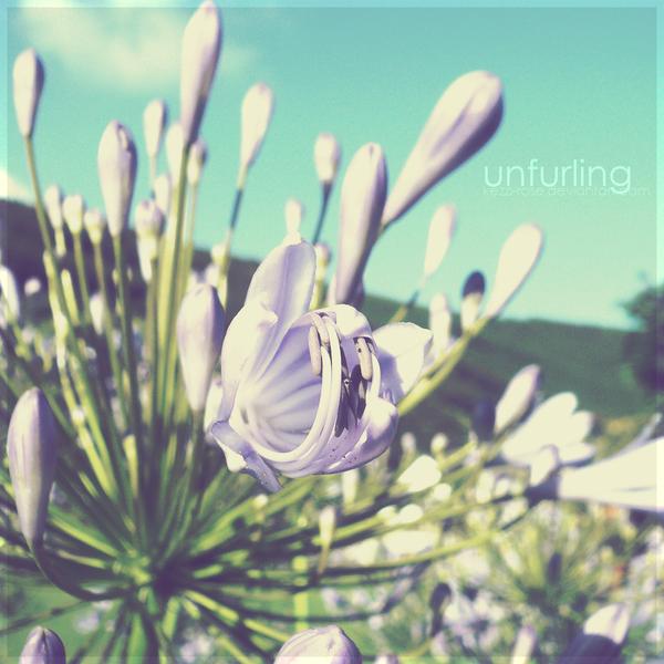 Unfurling by Kezzi-Rose