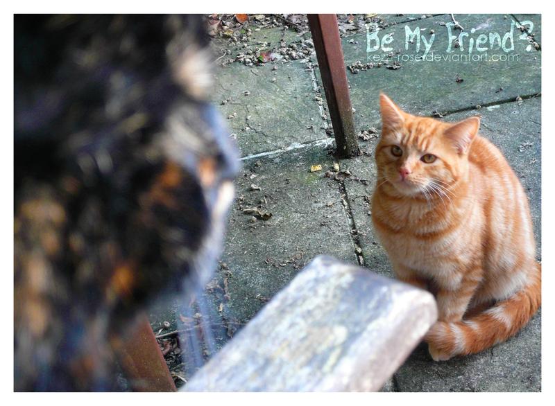 Be My Friend? by Kezzi-Rose