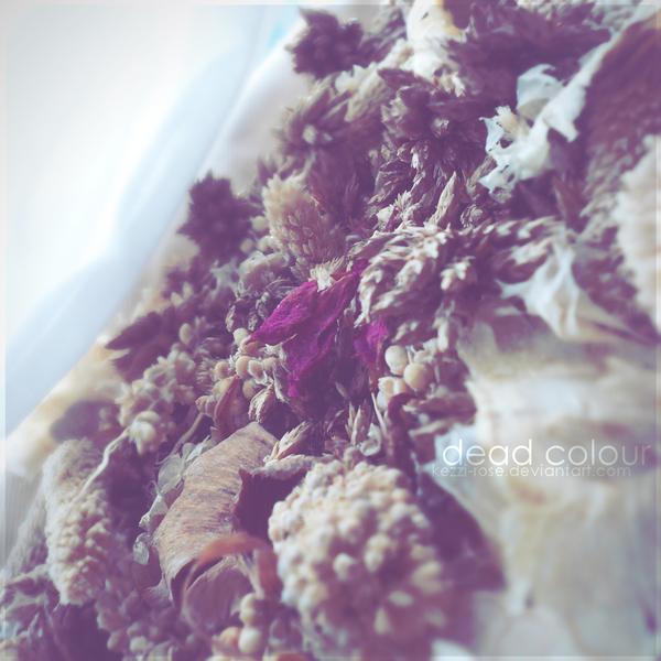 Dead Colour by Kezzi-Rose