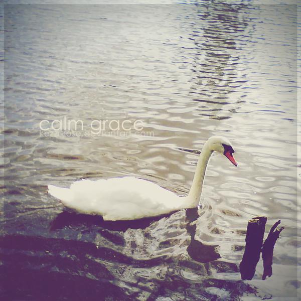 Calm Grace by Kezzi-Rose