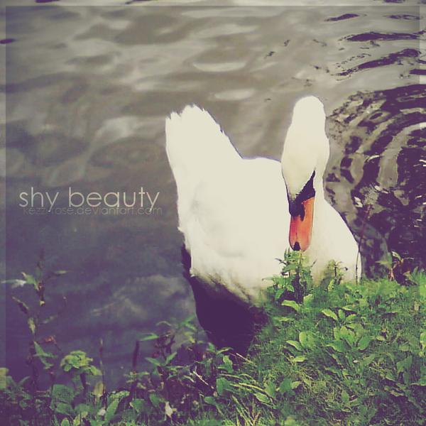 Shy Beauty by Kezzi-Rose