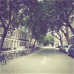 This Empty Street