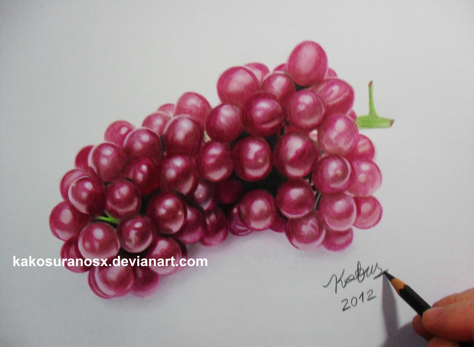 Realistic Grapes In Colored Pencil By Kakosuranosxgrapes Drawing In Color