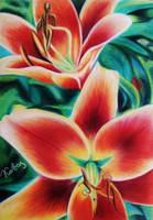 Flowers by kakosuranosx