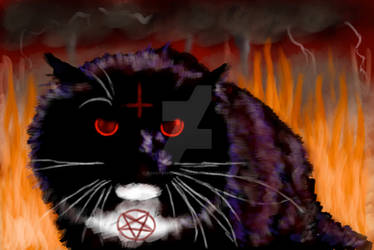 Cat From Hell