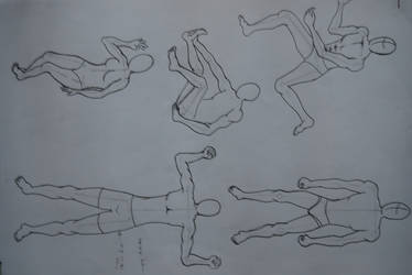 anatomy by Kageyoshi07