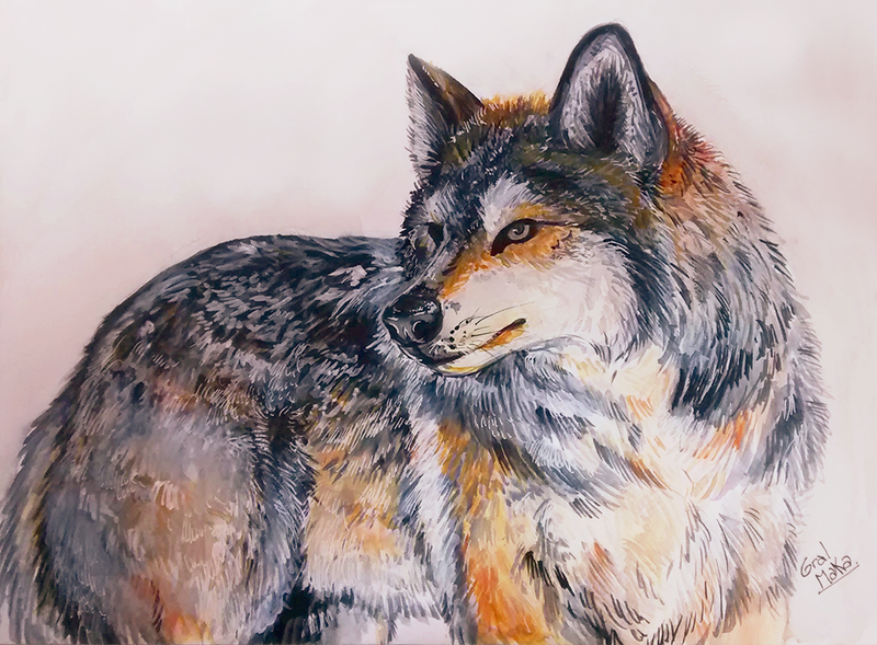 Wolf by GralMaka