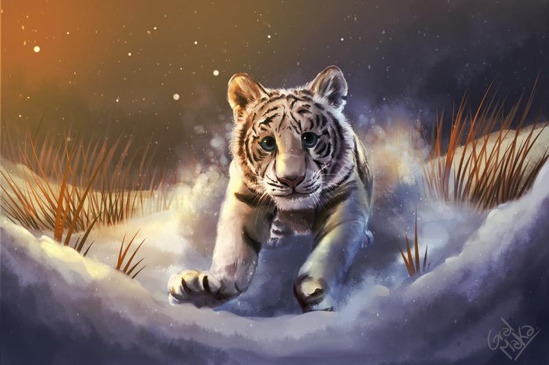 Tiger by GralMaka