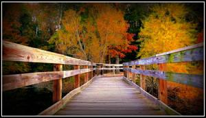 Autumn at Brick Pond