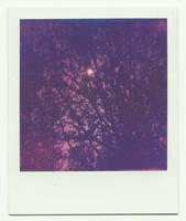 Sun by Linda-Dubbink