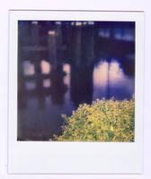 Bridge by Linda-Dubbink
