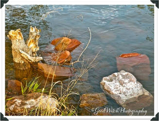 Water View by GoodWitchPhotography