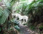 Unicorn of Treefern Trail by Unicorn-Wizard-Steph