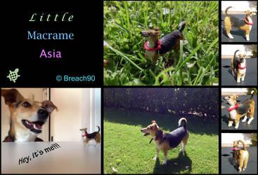 Little Macrame Asia by Breach90