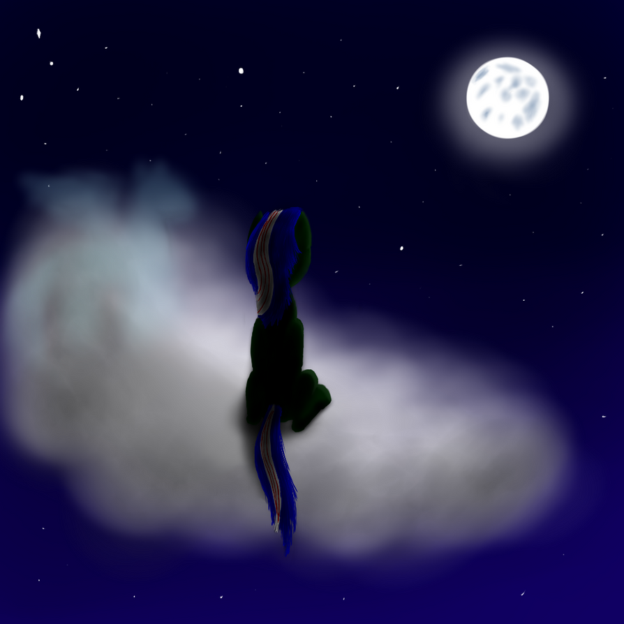 Gazing at the Moonlit Sky by SarahtheSpartan