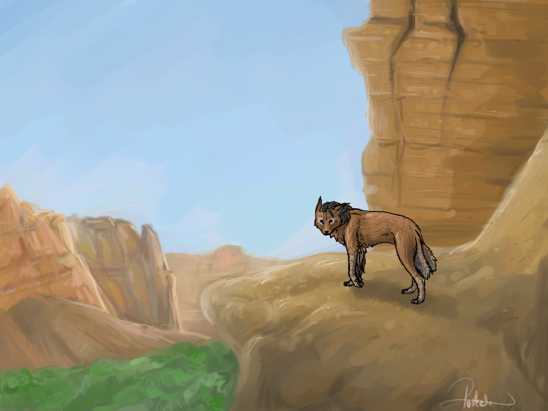 The Canyons Canyons_by_pocketo
