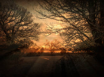 Celestial 3: Nascent Senses by DanielBrooksLaurent