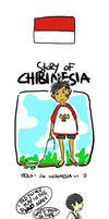 APH: Story of Chibinesia