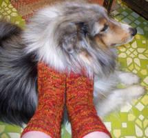 Englewood Socks