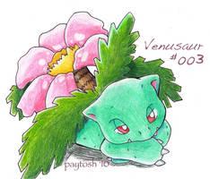 Venusaur by rayechu