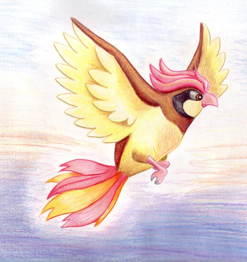 Pidgeotto by rayechu