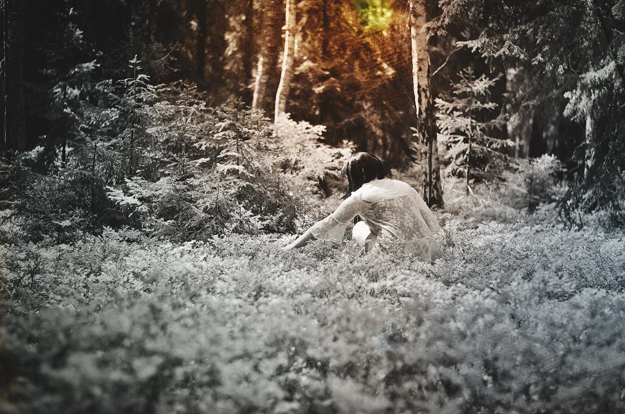 Skogen II by Anselmeth