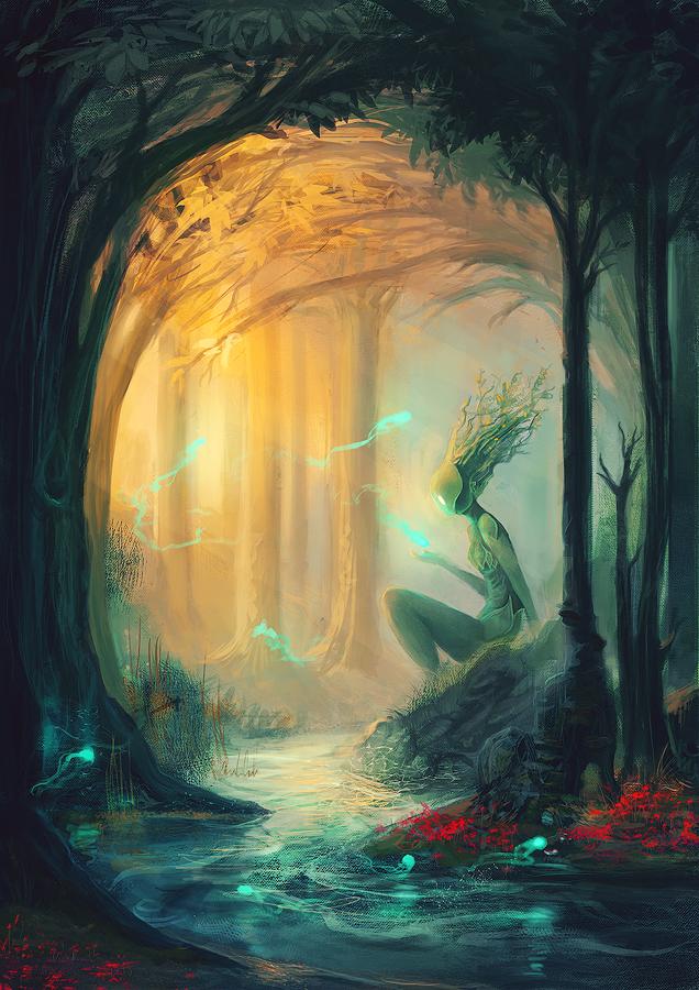 Forest by Anselmeth