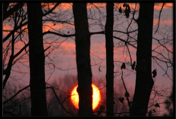 Early Morning by Deidreofthesorrows