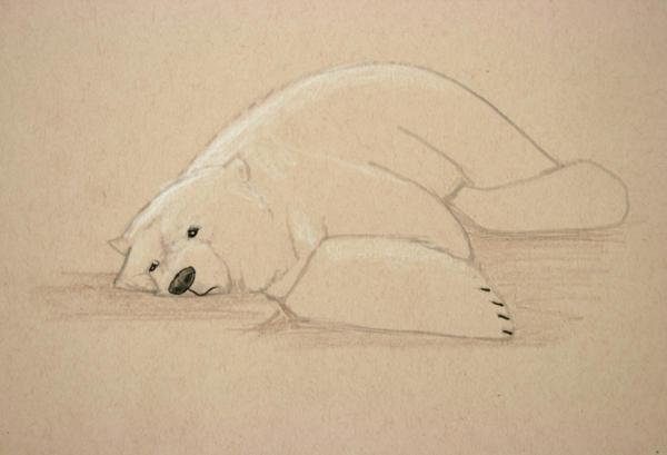 polar bear by AndreaGerstmann
