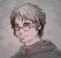 Harry's portrait by DanaisH