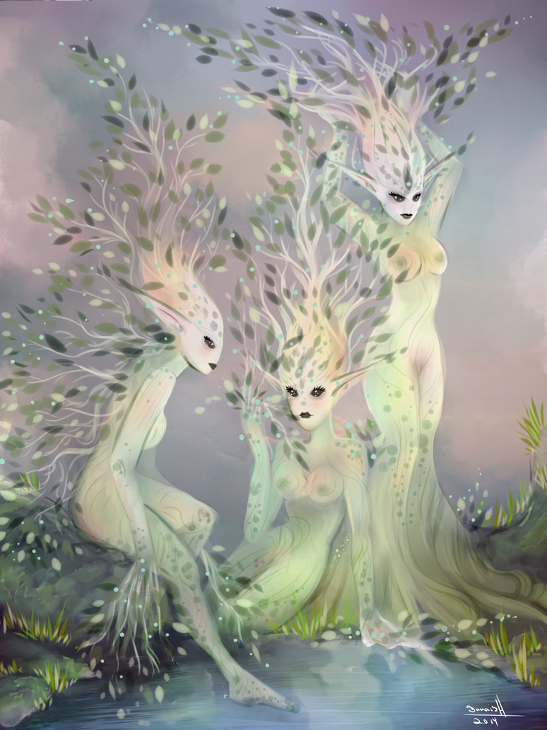 Forest nymphs by DanaisH