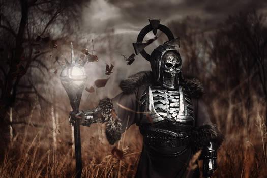 The Witcher - Wild Hunt General: Caranthir cosplay
