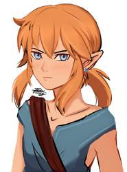 Link (BoTW, Climbing Gear)
