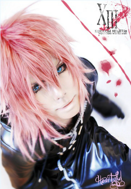 Marluxia -The Graceful Assassin by Heartyful