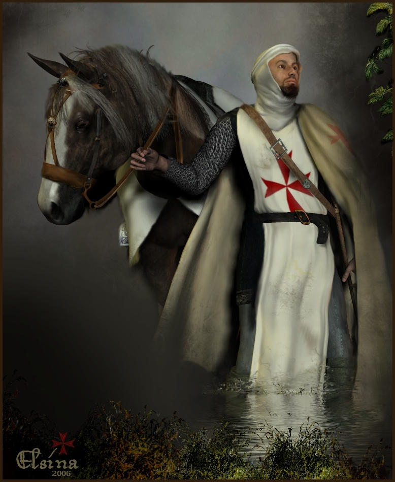 the knights templat - the knight templar by elsina on deviantart